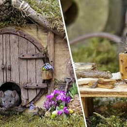 Guy Makes Tiny But Elaborate Hobbiton For Family Of Mice Who Visit His Garden
