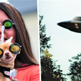 Today Is World UFO Day, Here's Why People Are Celebrating