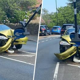 Driver Crashes Car Into Sign While Trying To Get Rid Of Spider