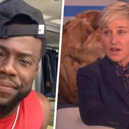 Kevin Hart Calls For 'Hate Sh*t To Stop' As Ellen DeGeneres's Ratings Plummet To All-Time Low
