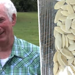 Arkansas Man Planted Mystery Seeds Delivered From China To Grow Massive Unstoppable Fruit