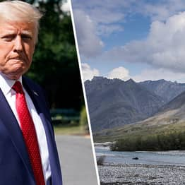 Trump Announces Plans To Drill In Arctic National Wildlife Refuge
