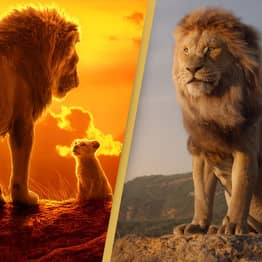 The Lion King Sequel Officially Confirmed By Disney