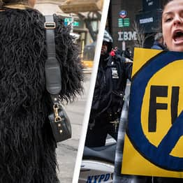 Fur Sales To Be Banned In Britain Under New Plans