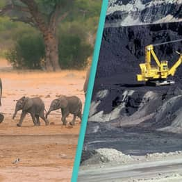 Zimbabwe Bans Coal Mining In All Its National Parks