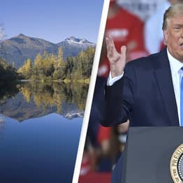 Trump Announces Plans To Cut Protections To America's Largest National Forest