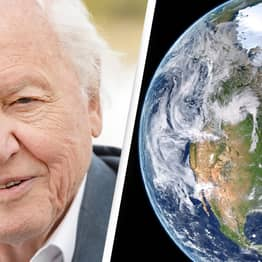 Sir David Attenborough Tells Us The Two Things That Can Be Done To Save The Planet