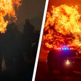 Four People Arrested For Deliberately Starting Wildfires Along American West Coast