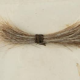 155-Year-Old Lock Of Abraham Lincoln's Hair Just Sold For $81,000