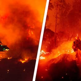 California Wildfires Have Burned A Record 2 Million Acres Of Land