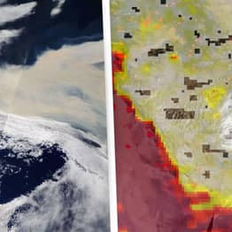 NASA Space Images Show Devastating Impact Of California Wildfires
