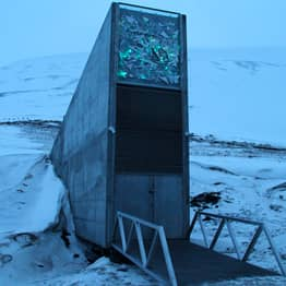 Inside The Doomsday Vault That Stores Every Known Crop On The Planet