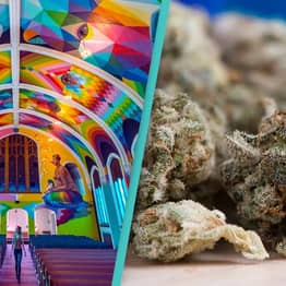 An International Church of Cannabis Exists And It Looks Incredible