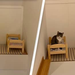 Woman Builds Adorable Bedroom For Her Cats