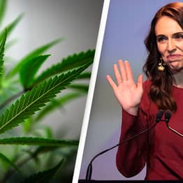 New Zealand Votes Against Legalising Weed