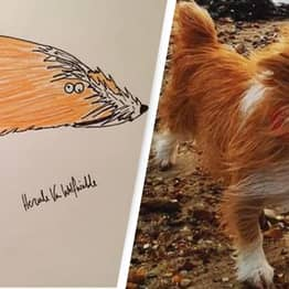 'Rubbish' Pet Portraits Raise More Than £8,000 For Homeless