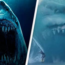 Megalodon Sharks The Size Of School Buses Had Heads As Big As Cars