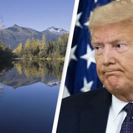 Trump Stripping Protections From America's Largest National Forest
