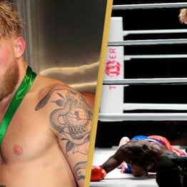 Jake Paul Challenges Conor McGregor To Fight After Knockout Victory Over Nate Robinson
