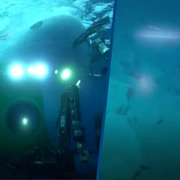 Submarine Sends First Live Video Footage Back From Deepest Oceanic Trench On Earth