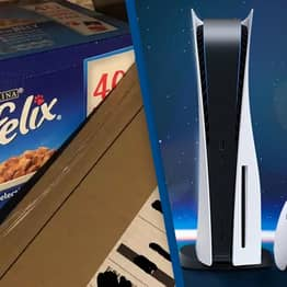 PlayStation 5 Customer Get Box Of Cat Food Delivered Instead Of Console