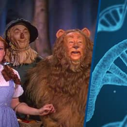 Scientists Put The Wizard Of Oz On A Strand Of DNA