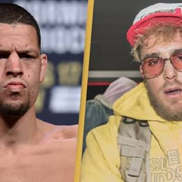 Jake Paul Lays Into 'Pothead' Nate Diaz In New Video Sparking Feud