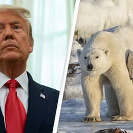 Court Rejects Trump Approval of Offshore Drilling Project in Arctic