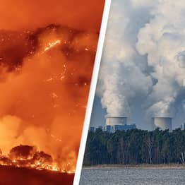 UN Calls On Humanity To End 'War On Nature' And Go Carbon-Free