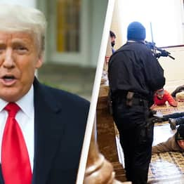 Trump Says He Loves Protesters And Asks Them To Go Home