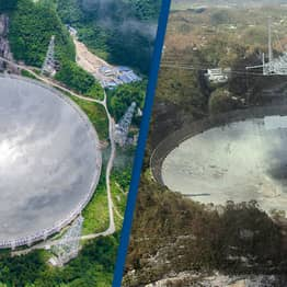 Iconic Arecibo Observatory Will Be Rebuilt After It Collapsed Last Month