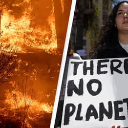 US Lawmakers To Introduce Bill Declaring Climate Change A National Emergency