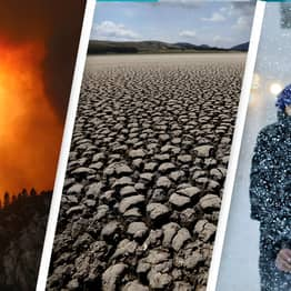 UN Says Humans Have Broken The Planet And Need To Make Huge Changes To Save It