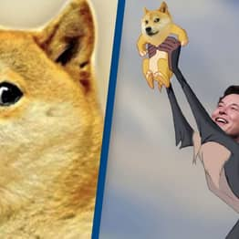 Dogecoin Price Rises As Elon Musk Goes On Twitter Spree In Support