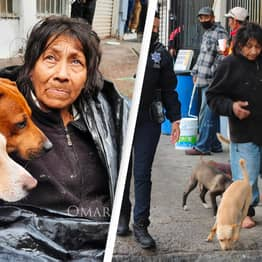 Homeless Woman In Mexico Refuses To Go To Shelter Because They Won't Take Her Six Dogs