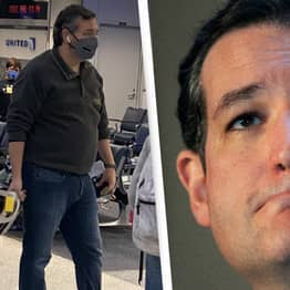 Ted Cruz Reportedly Also Flew To Jamaica On July 4 During Pandemic