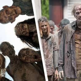CDC's Zombie Preparedness Guide Offers Tips To Survive A Real-Life Apocalypse