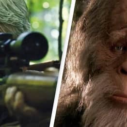 Oklahoma Offers $2.1 Million Bounty To Bring In Bigfoot Alive