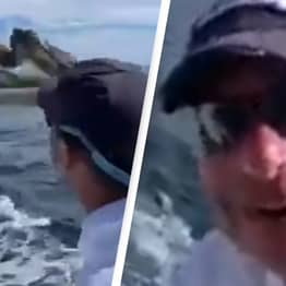 Men Get Unexpected Visitor On Boat While Feeding Fish To Birds