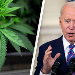 Democrats Say They'll Work To Legalise Marijuana With Or Without Biden
