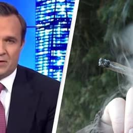 Right-Wing TV Host Greg Kelly Claims Weed Once Got Him So High He Ended Up In Kenya