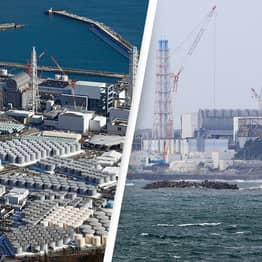 Japan Approves Plans To Dump Radioactive Fukushima Water Into The Pacific Ocean