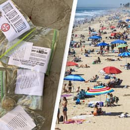 KKK Flyers Found Scattered Around California 1 Week Before 'White Lives Matter' Rally