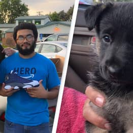 Adorable Puppy Traded For Pair Of Trainers Celebrates First Birthday