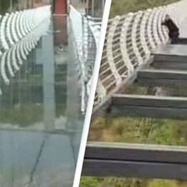 Tourist Gets Stranded On 100-Metre-High Glass Bridge In China After Panels Blown Off In Gale