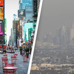 COVID-19 Lockdowns Led To 95,000 Fewer Air Pollution Deaths, Study Finds