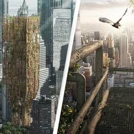Bizarre 'Living' Skyscrapers Made From Genetically Engineered Trees Win Architectural Competition