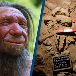 100,000-Year-Old Neanderthals 'Killed By Hyenas' Discovered In Italian Cave