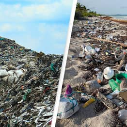 Twenty Companies Responsible For 55% Of All Plastic Waste