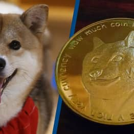 Cryptocurrency Expert Claims New Digital Coin Shiba Inu Is 'Manipulative And Cynical'